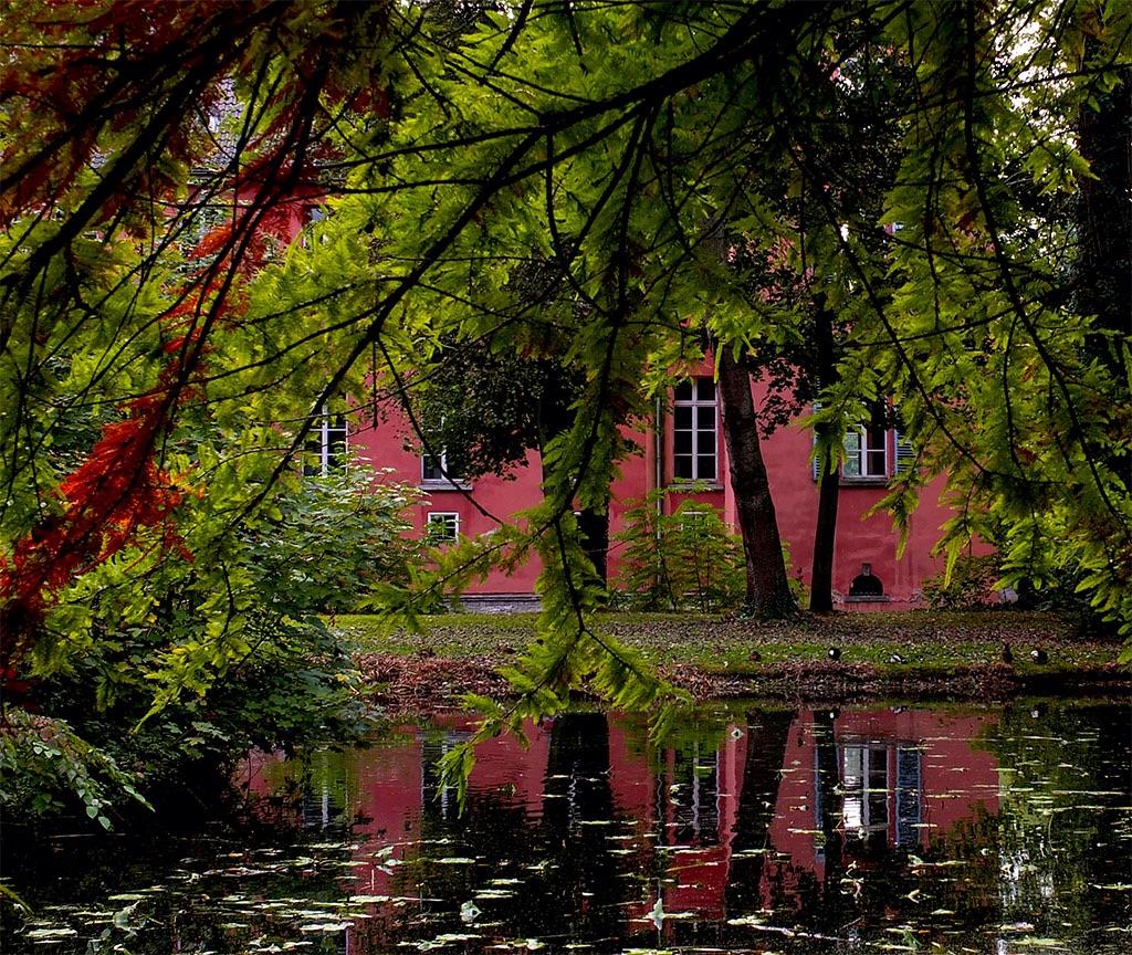 Fenster zum Teich