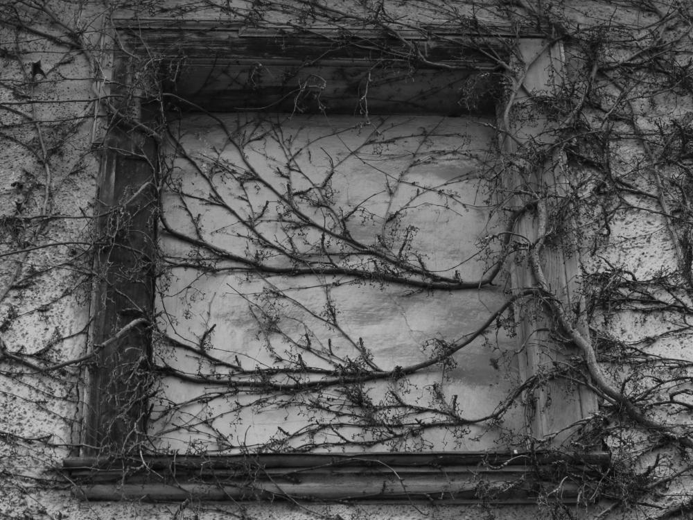 Fenster zur Ewigkeit