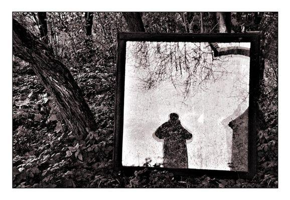 Fenster zur Seele