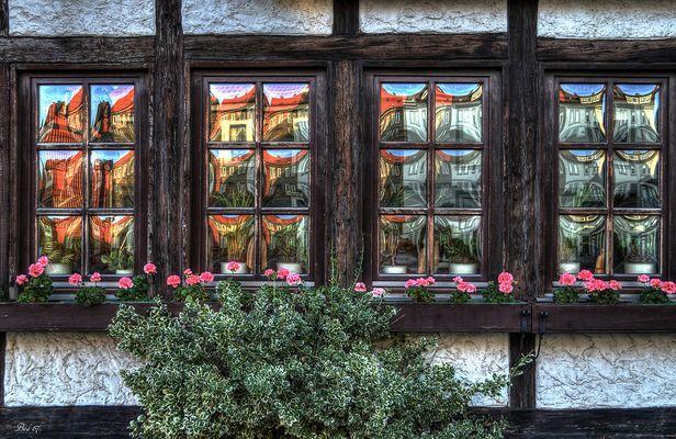 FensterBilder ...