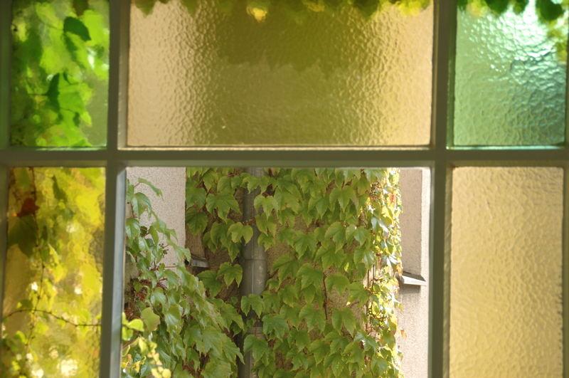 Fenstergrün