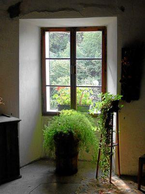 Fensteridylle - Trostburg