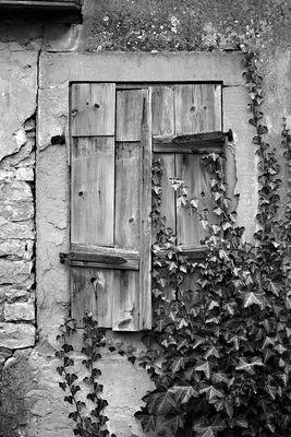 Fensterläden in s/w