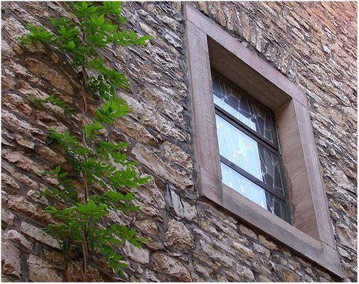 Fensterrahmen?