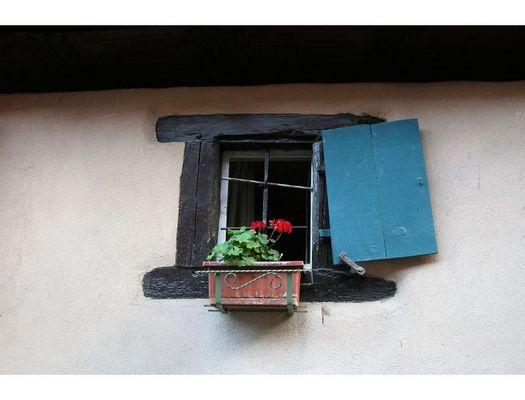 ...Fenêtre...