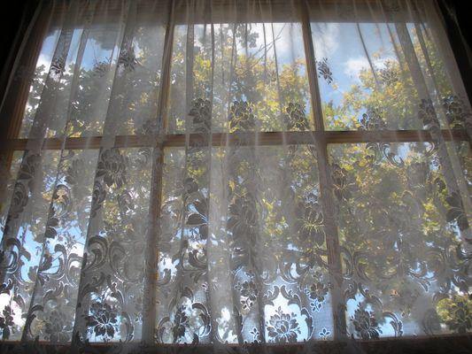 Fenêtre à Stellenbosch (Afrique du Sud)