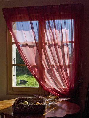 Fenêtre sur cour…herbue, dans le Gers -- Das Fenster zum Hof…mit Gras, in dem Gers