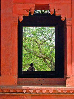 Fenêtre sur un regard (entre orient et occident)