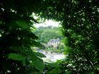 Fenêtre végétale à Terrasson