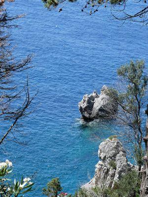 fenêtre végétale sur mer méditerranée