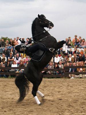 Feria Andaluz