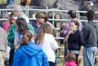 Feria de ganado Tudanco