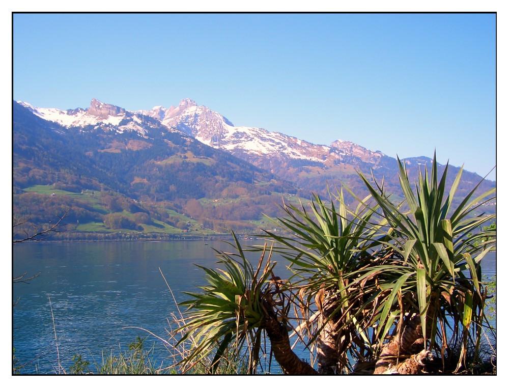 Ferienland Schweiz
