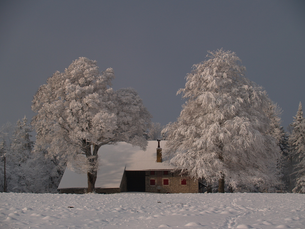 Ferme Neuchâteloise région de Chaumont