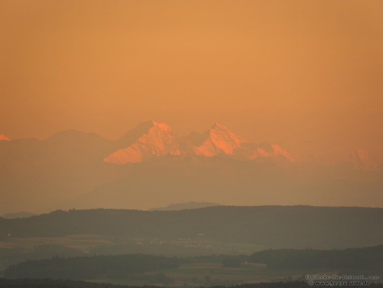 Ferne Schweizer Alpengipfel im Abendlicht
