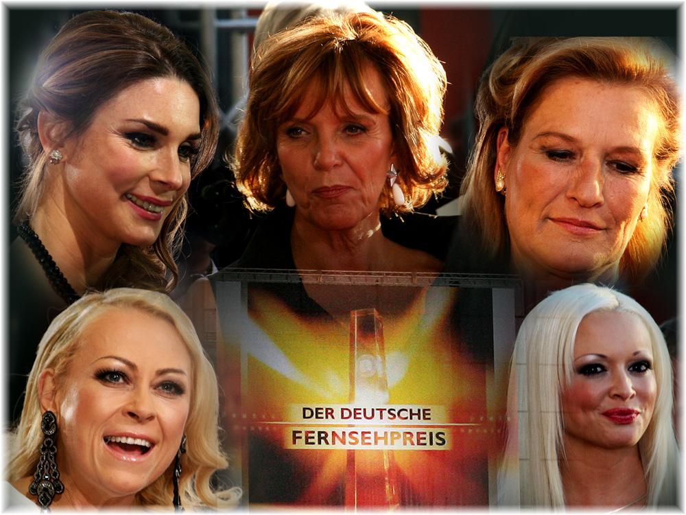 Fernsehpreis 2013