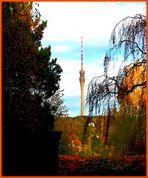 Fernsehturm Dresden im goldenen Oktober 2009 I