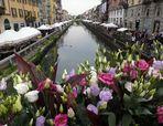 festa dei fiori sul naviglio grande