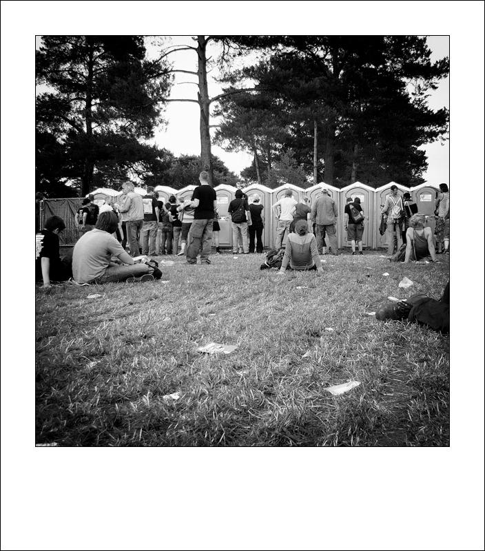 Festival 7