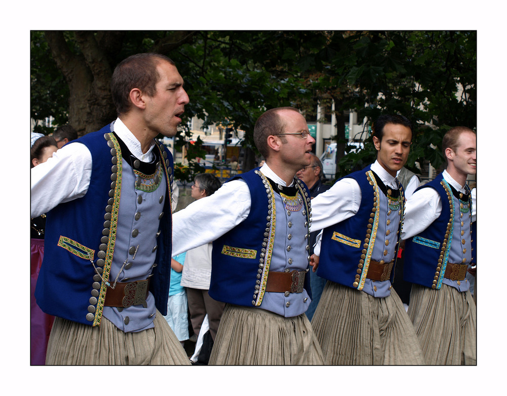 Festival de Cornouailles 2008