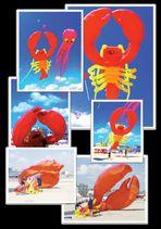 Festival dell'Aquilone 1999 a Cervia. Il polipo osserva l'atterraggio del granchio (008)