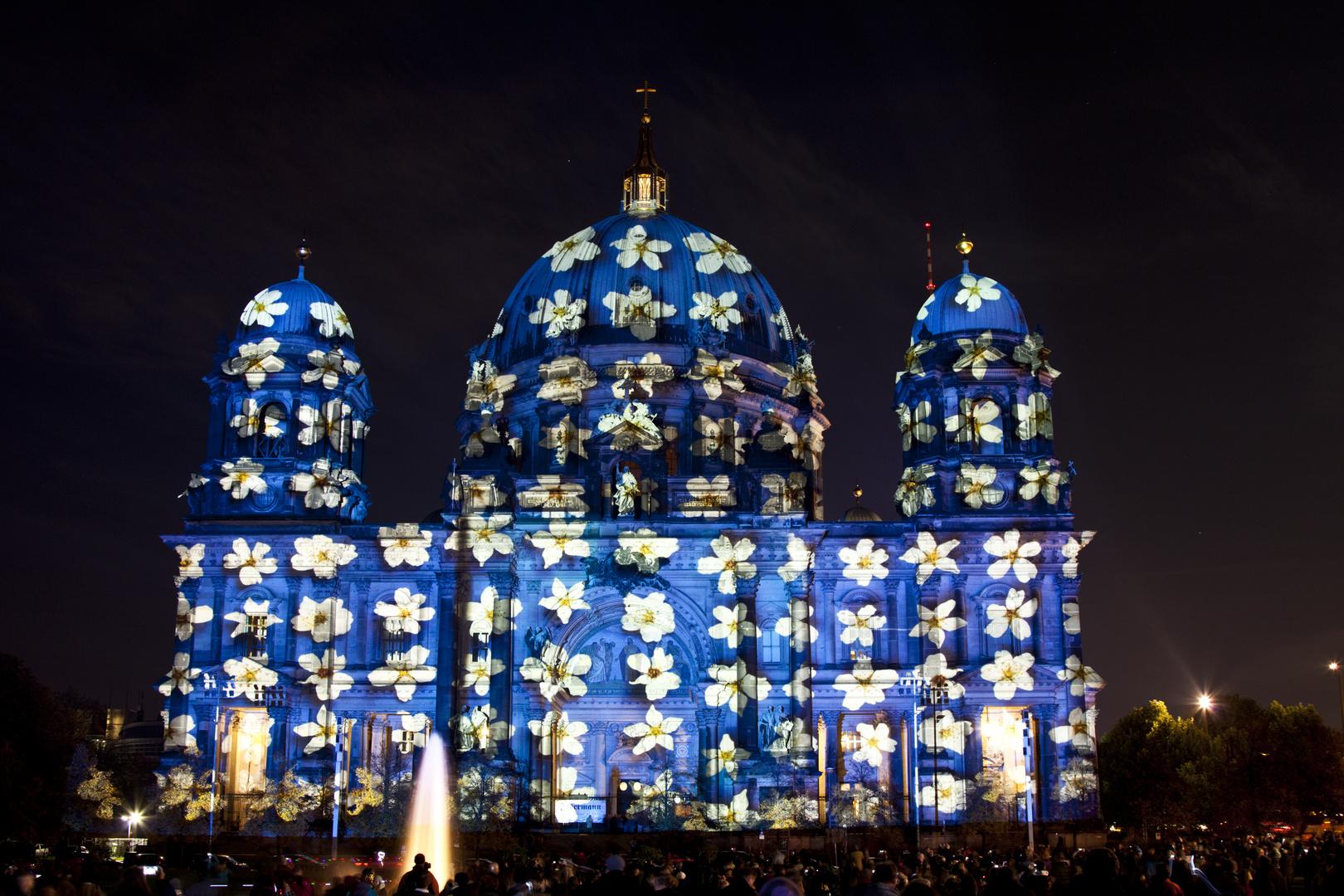 Festival of Lights 2013 (4)