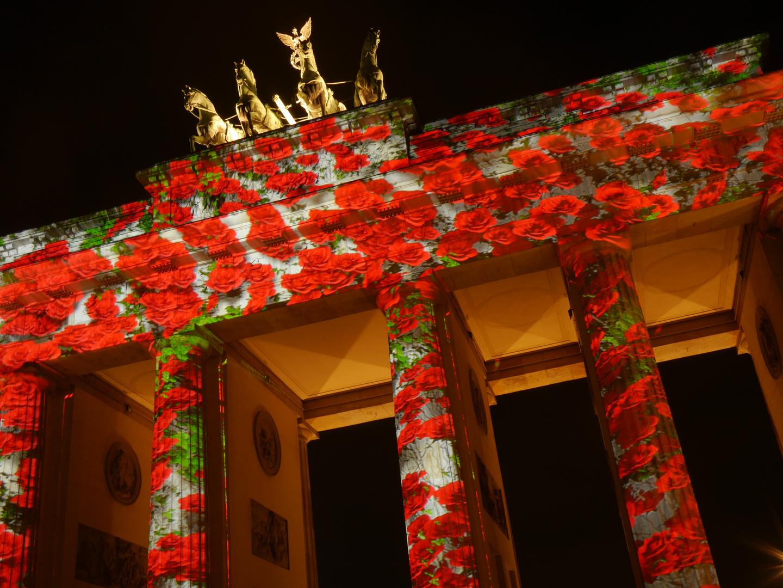 Festival of Lights 2014