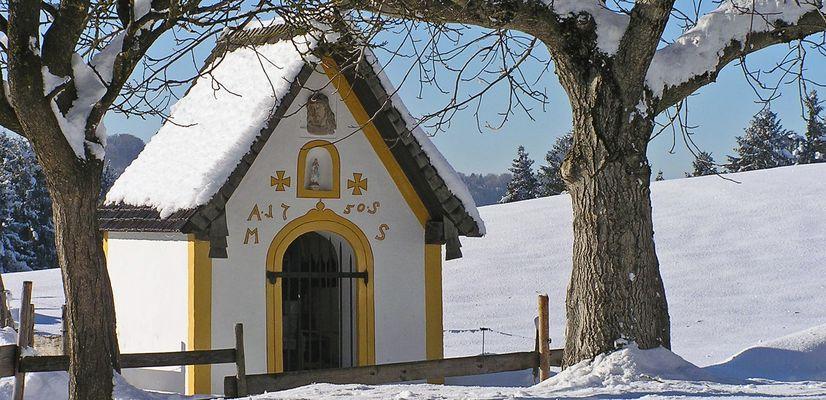Festum omnium Sanktorum (Allerheiligen) ist heute...