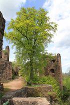 Festung Hohenschramberg