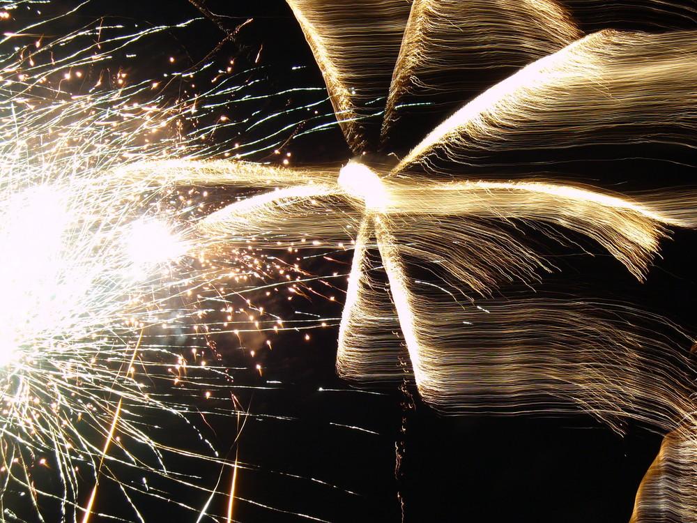 feu d'artifice du 14 juillet 2007