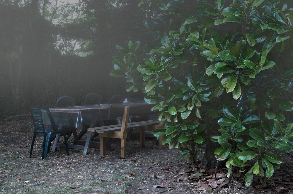 feucht und lautlos verdrängt der Nebel die Sommerwärme