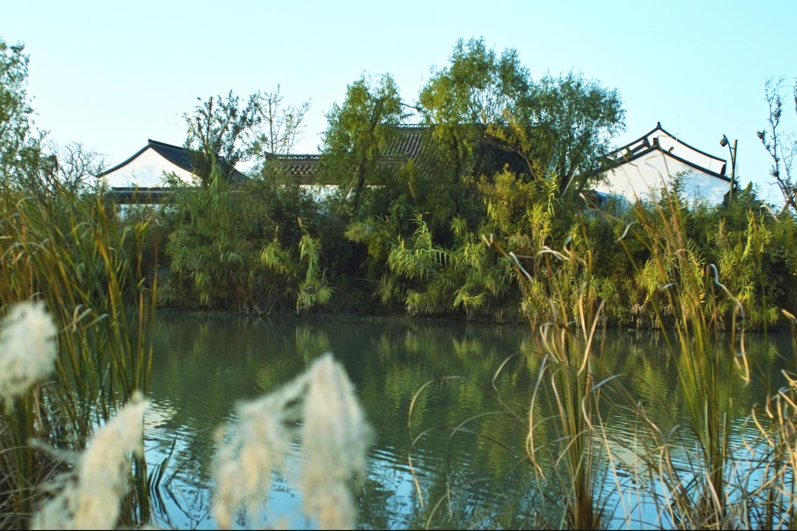 Feuchtgebiet in Xixi