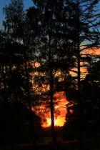 Feuer am Horizont
