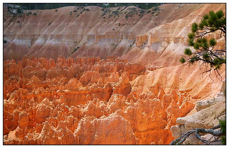 Feuer der Hoodoos im Bryce Canyon - Utah, USA