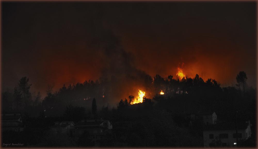 Feuer in Coja (3)