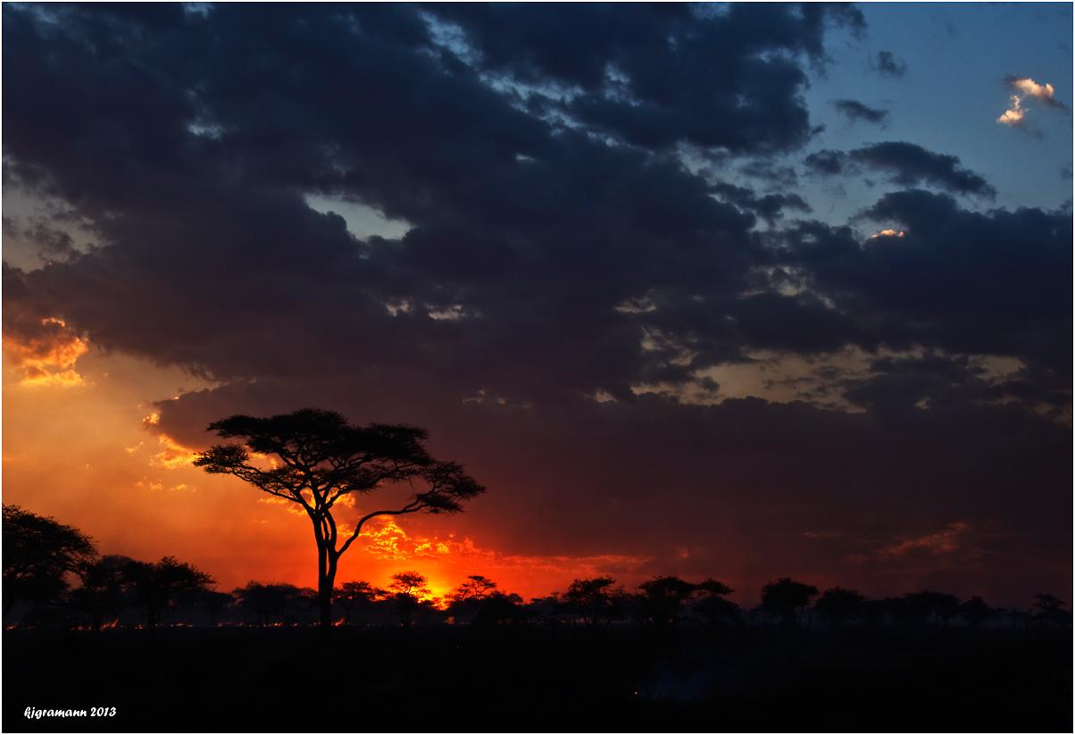 feuer in der serengeti.......