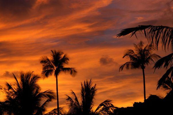 """""""Feuer"""" über Phuket"""
