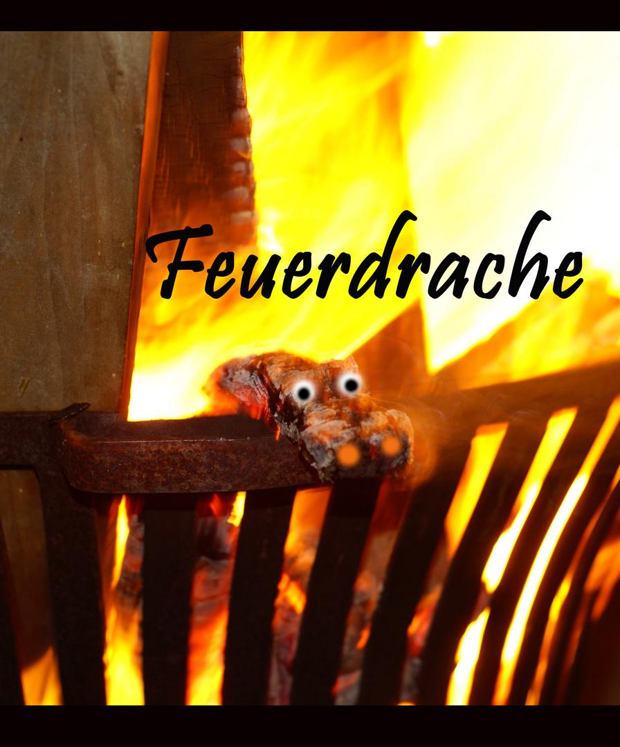 Feuerdrache wohnt natürlich im Feuerkorb...