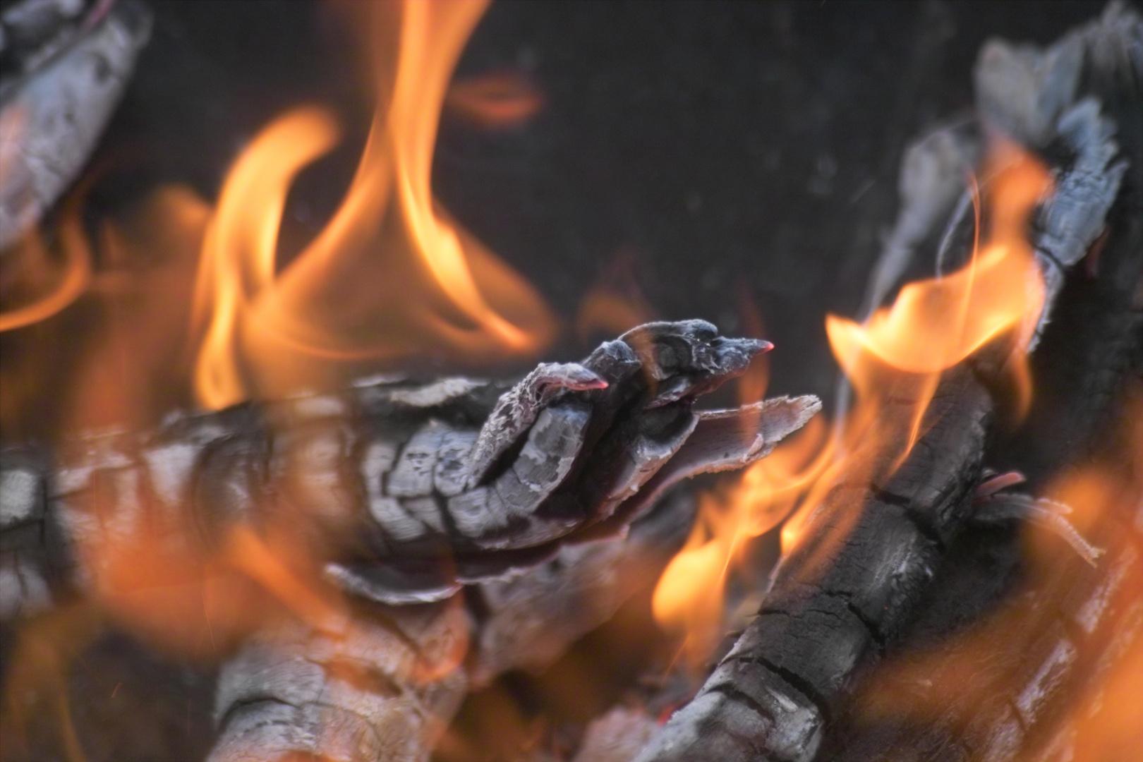 Feuerkralle