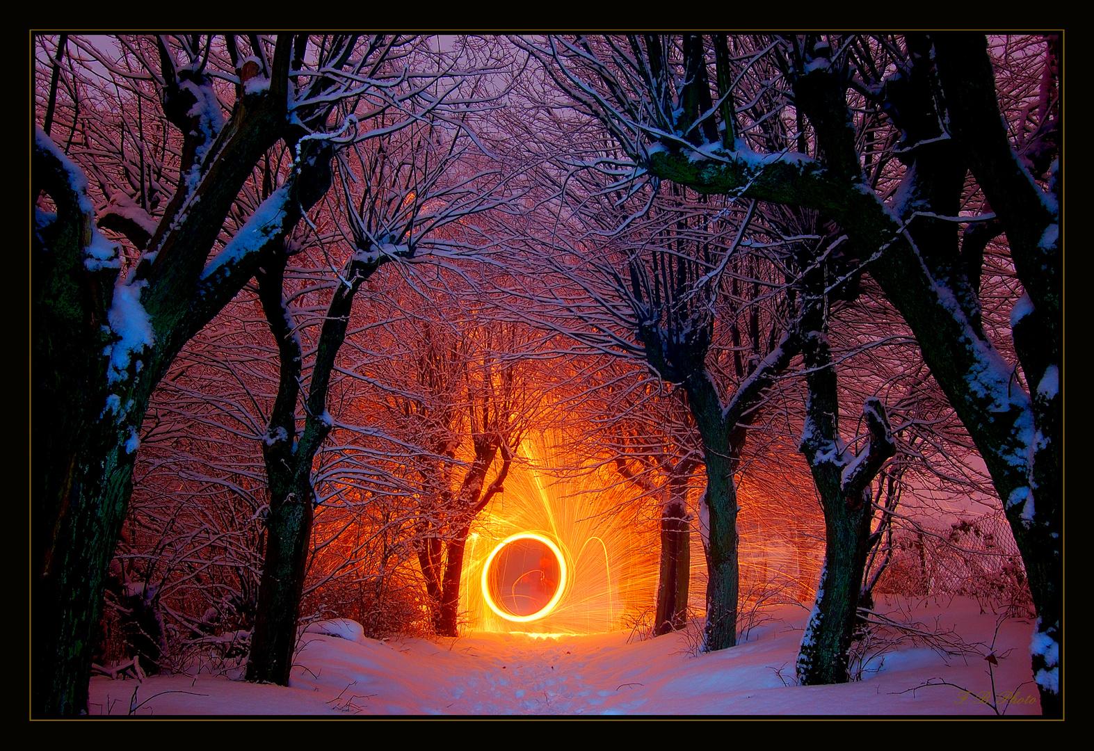 Feuerkreis im Unterholz