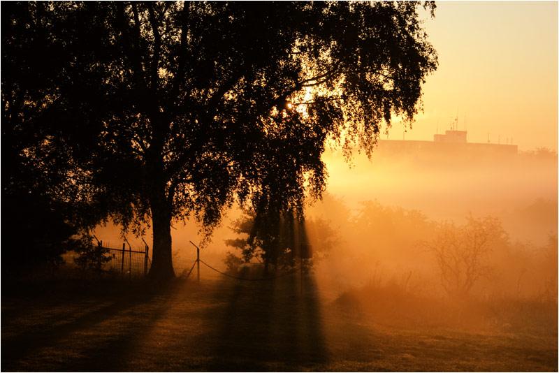 Feuersbrunst am Morgen