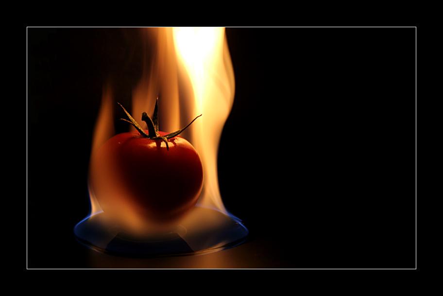 Feuertomate