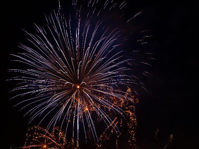 Feuerwerk bei Rhein in Flammen 2009 in Bonn 2
