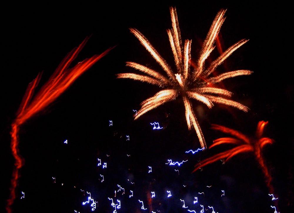 Feuerwerk der Superlative München 2008/1