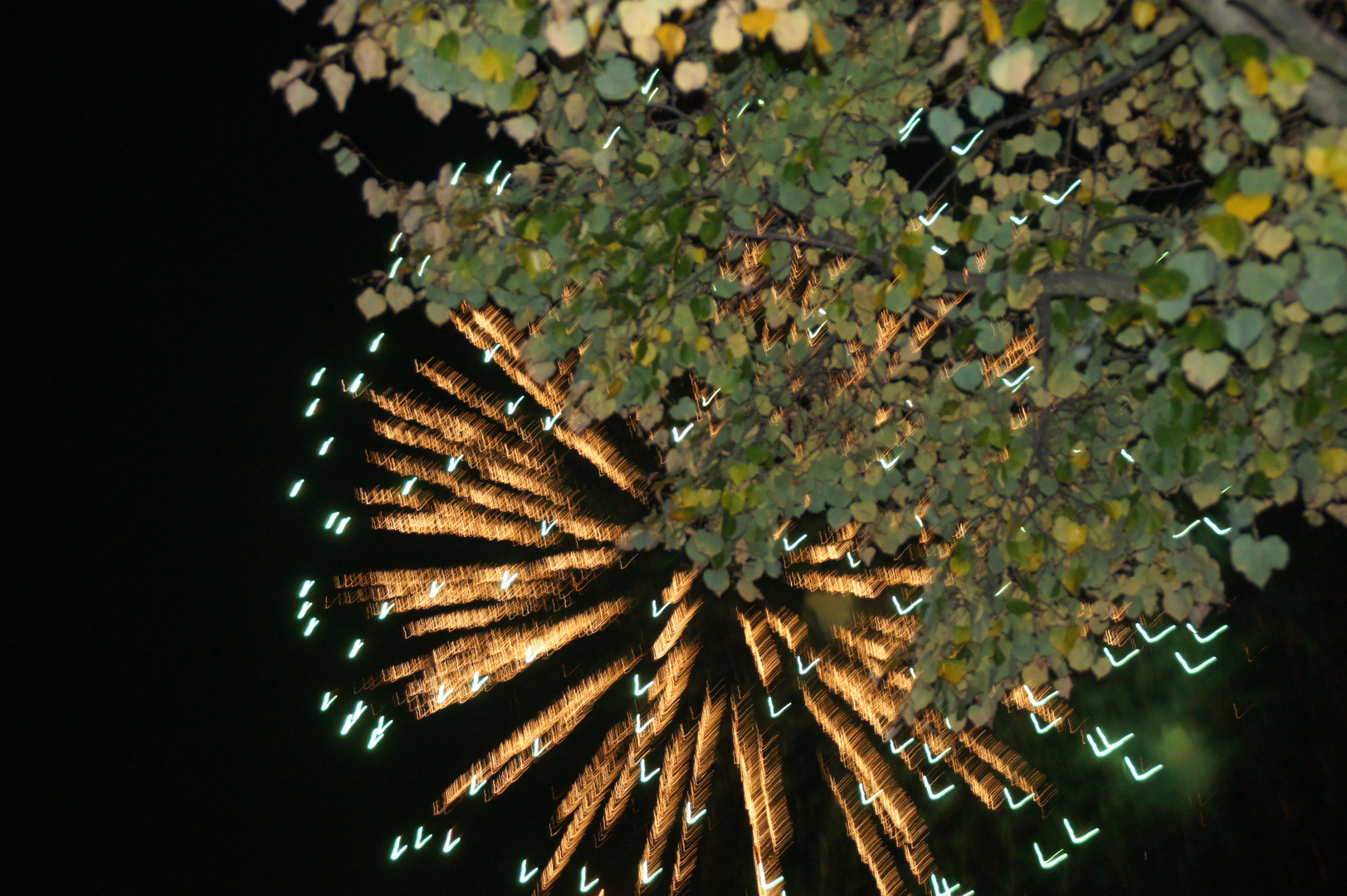 Feuerwerk im Herbst