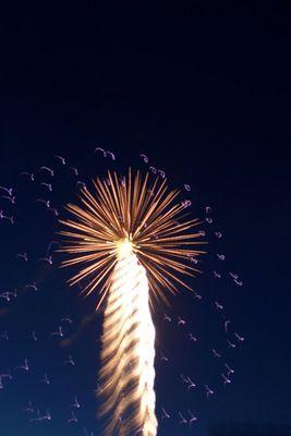 Feuerwerk im Movie Park
