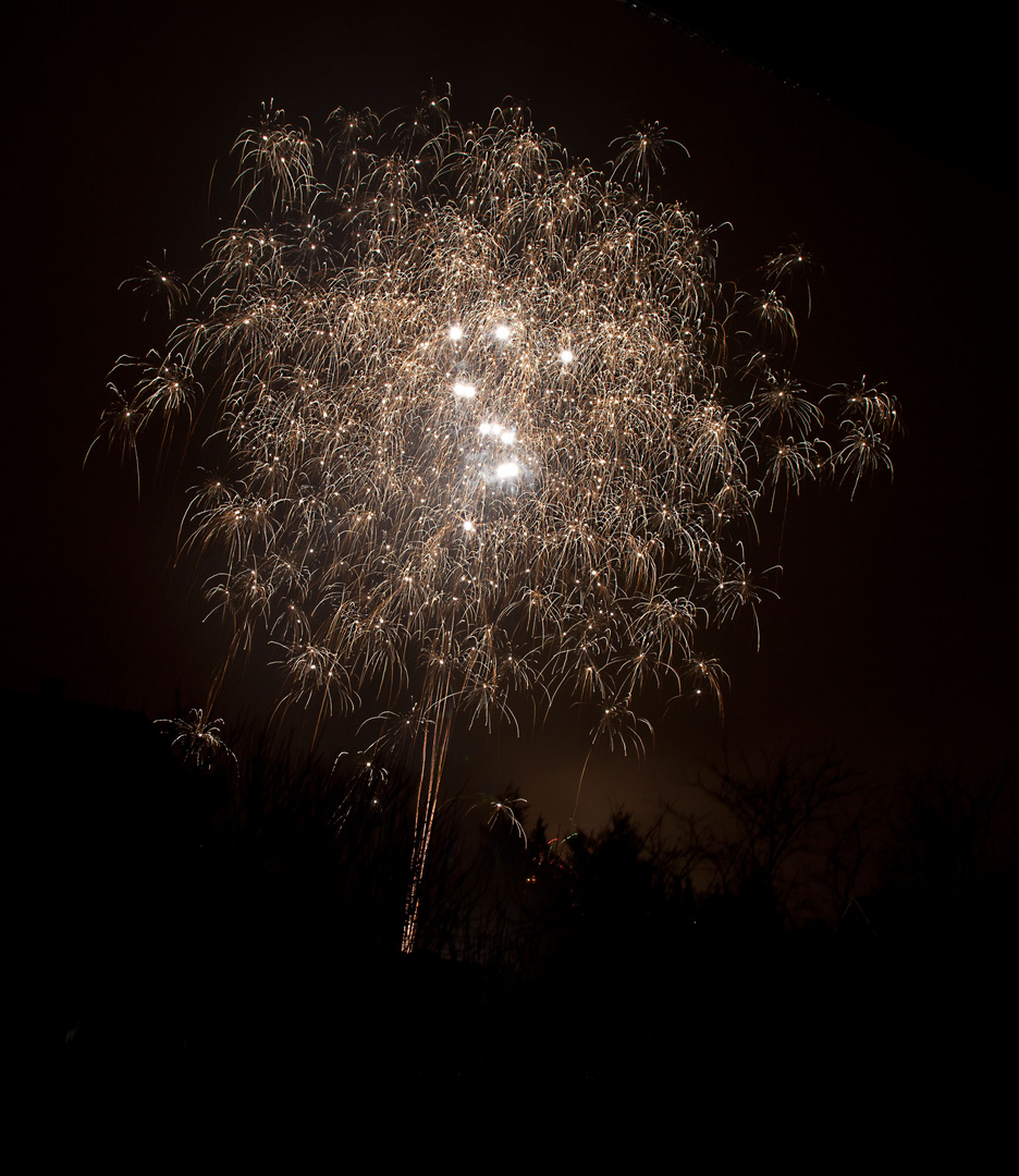 Feuerwerk Silvester Bleckede II