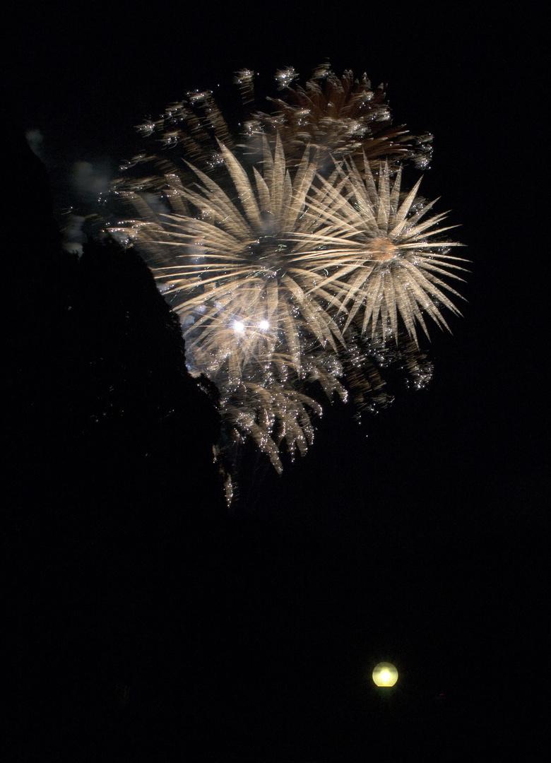 Feuerwerkblumen