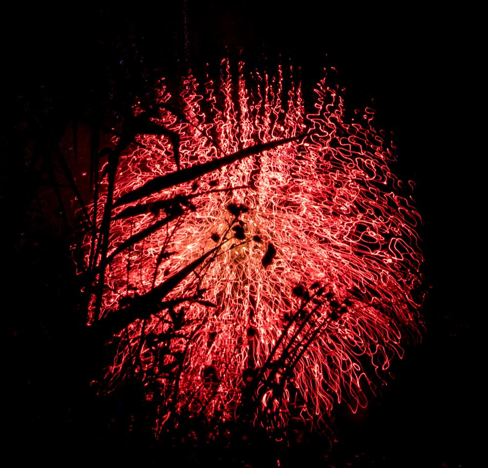 Feuerwerks - Spiegelung ...