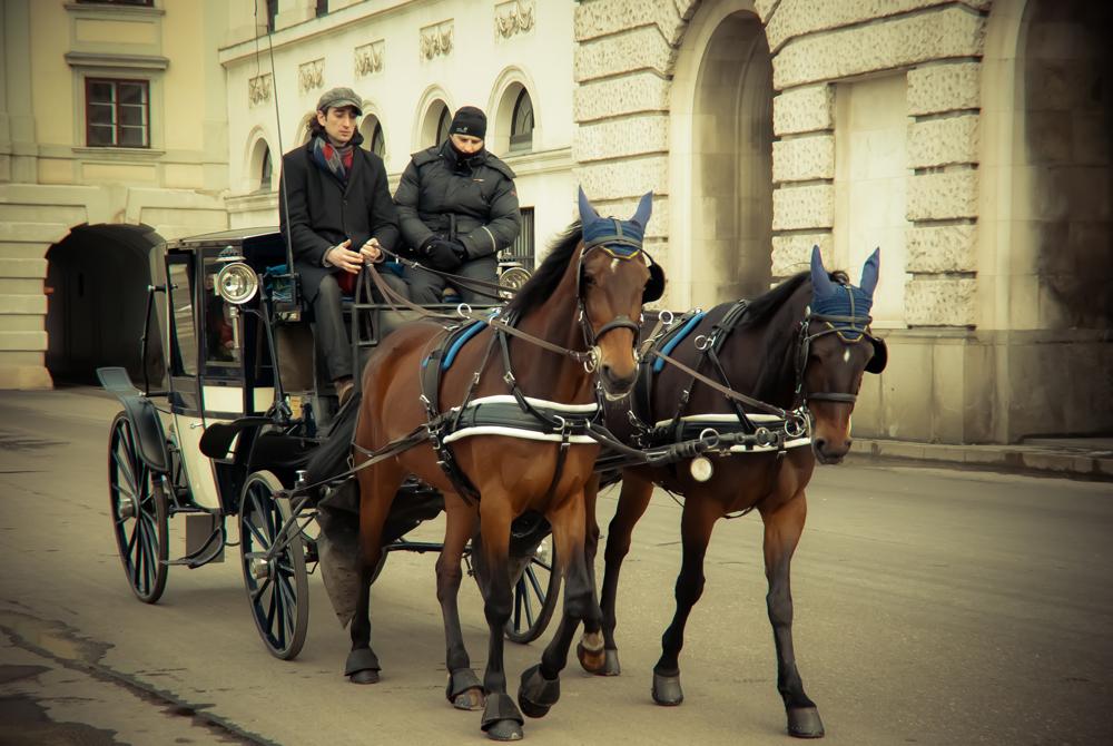 Fiaker in Wien ....